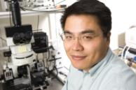 Lead Faculty Researcher: Min-Feng Yu, MechSE, Illinois